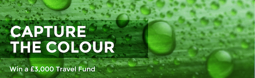 capturethecolour-banner-green (2)