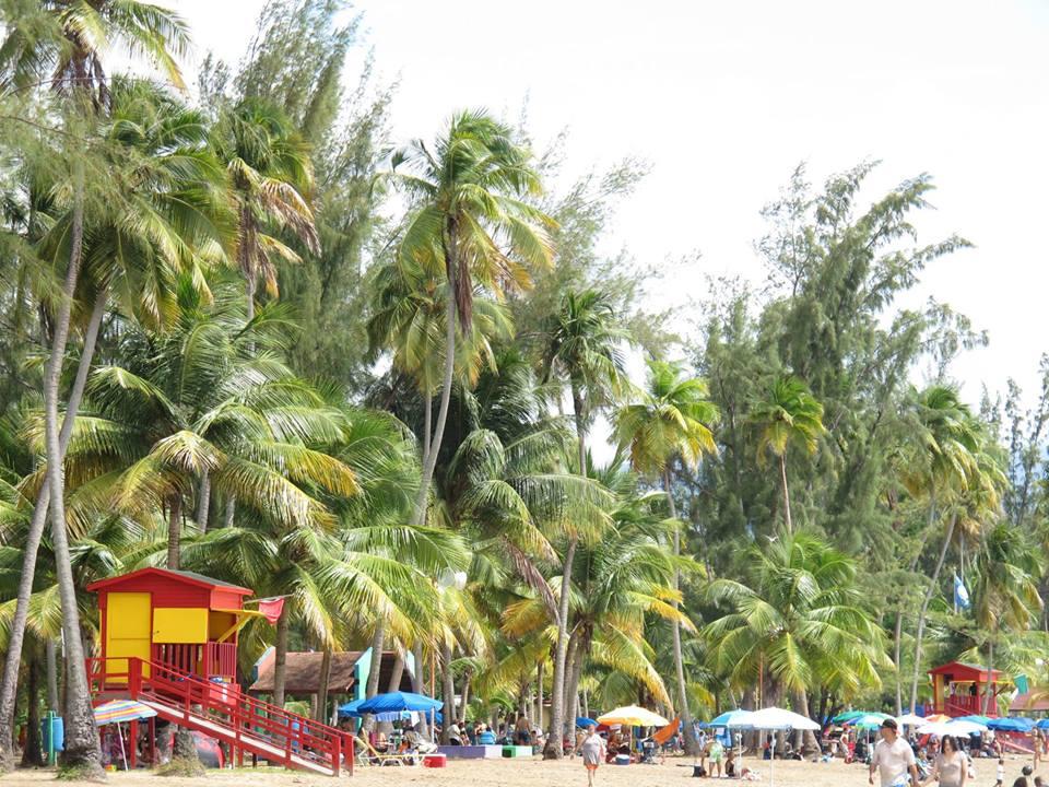 Resultado de imagem para Luquillo Puerto Rico