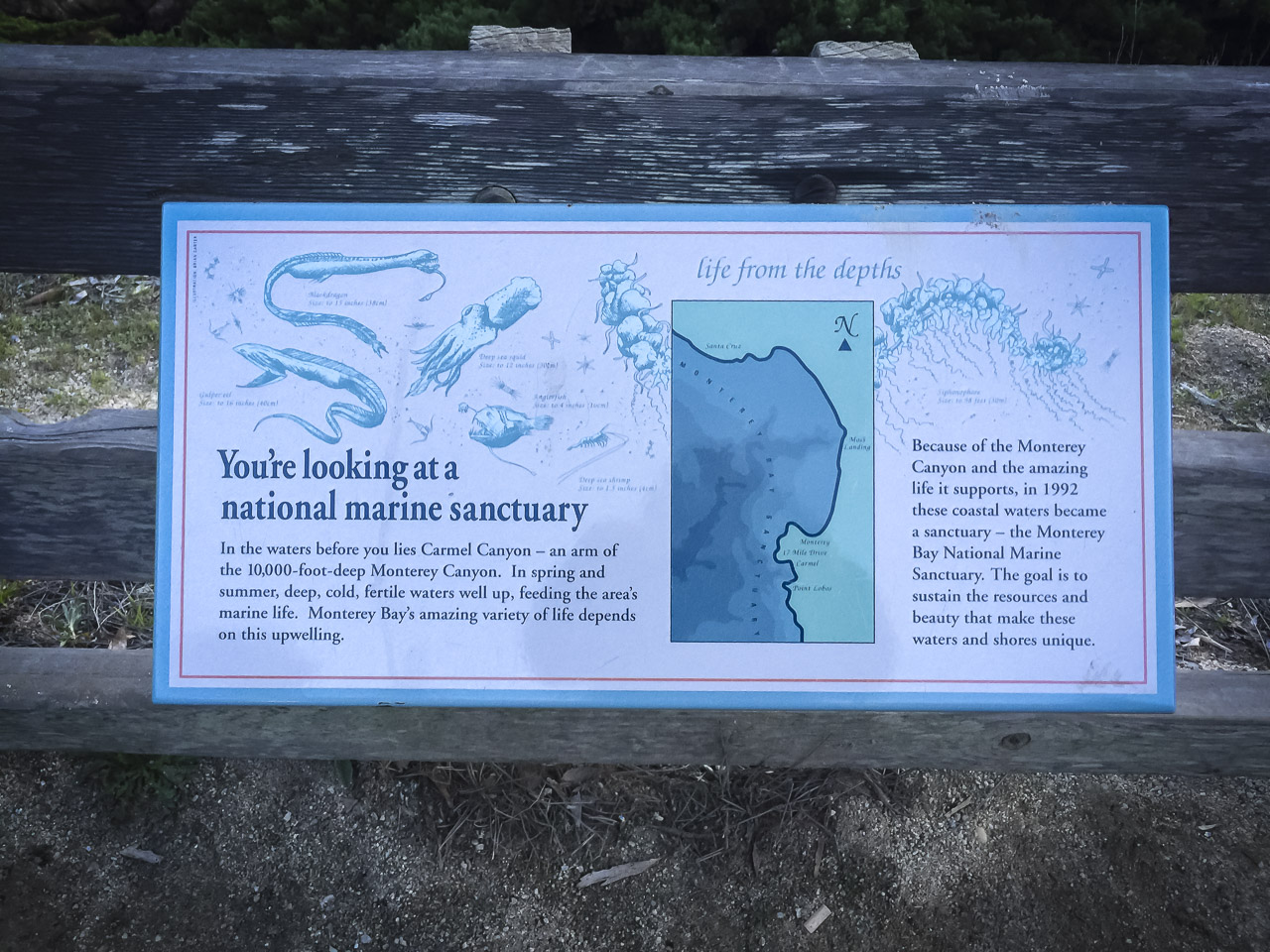 Pacific Grove Marine Gardens Conservation Area