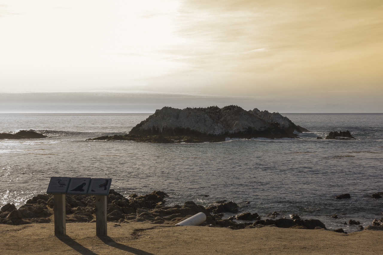 Bird Rock, along 17 Mile Drive, is a little smaller today.