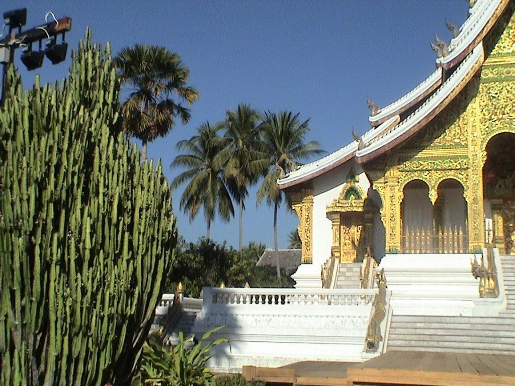 The golden wat ho Temple in Luang Prabang