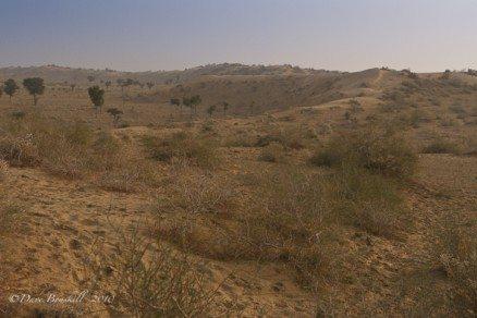Thar Desert in Bikaner India