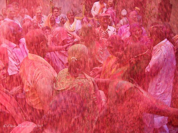 holi powder in crowd india