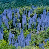 The Pinnacles, Malaysian Borneo