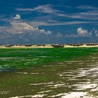 The Island Paradise of Zanzibar