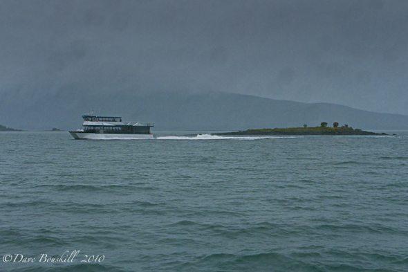 Alaska-Juneau-Whale-Watching-Boat