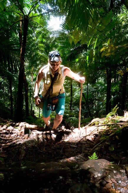 mount-liamuiga-trail-hike