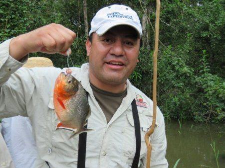 piranha amazon river cruising