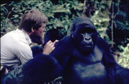 Ian Redmond with Gorilla