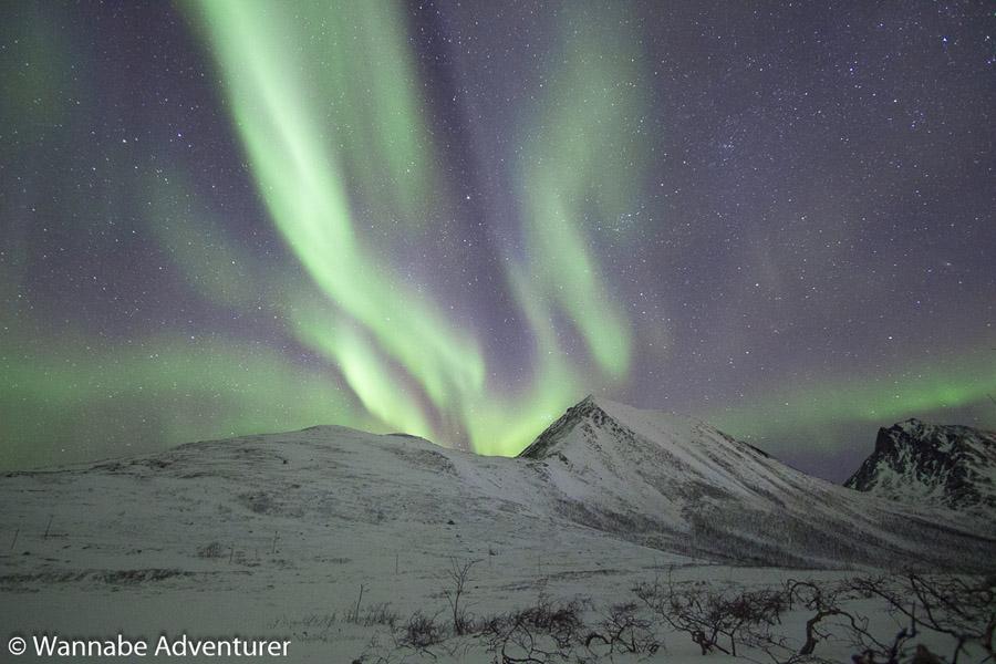 Arctic Adventure Travel