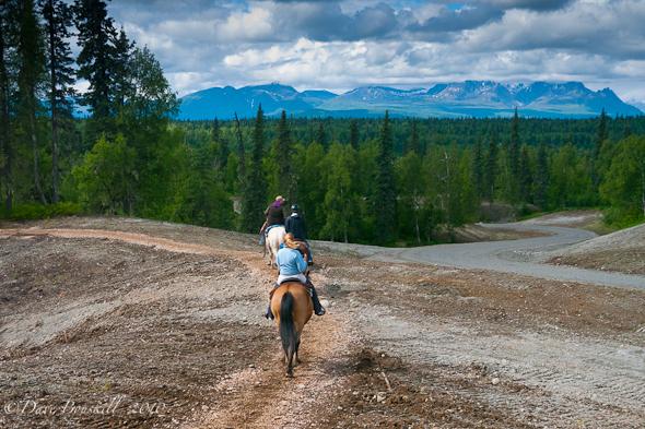 riding horses alaska