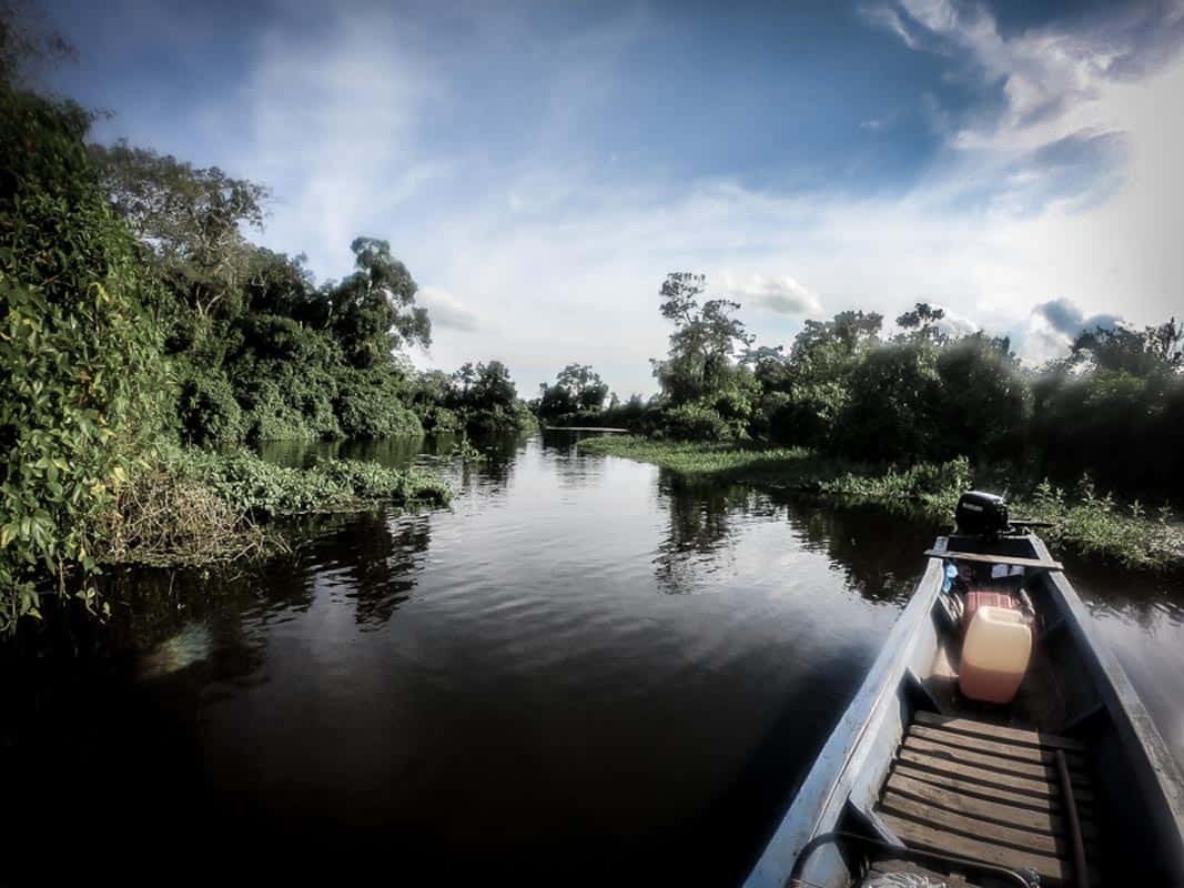 visiting the amazon from bolivia header image