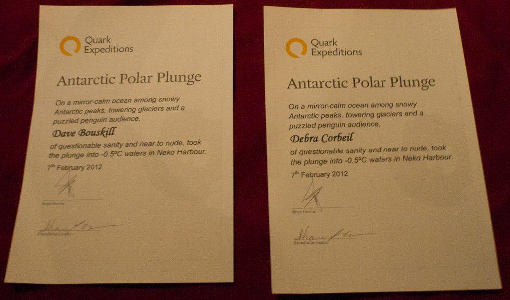 Taking the Polar Plunge in Antarctica