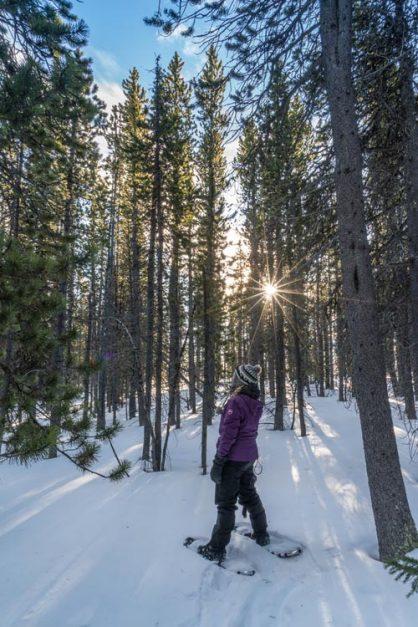 heli snowshoe tour banff alberta