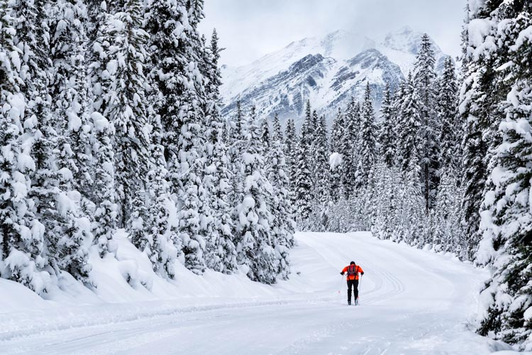 It is easy to stay warm in Banff National Park. Just throw on your cross-country skiis