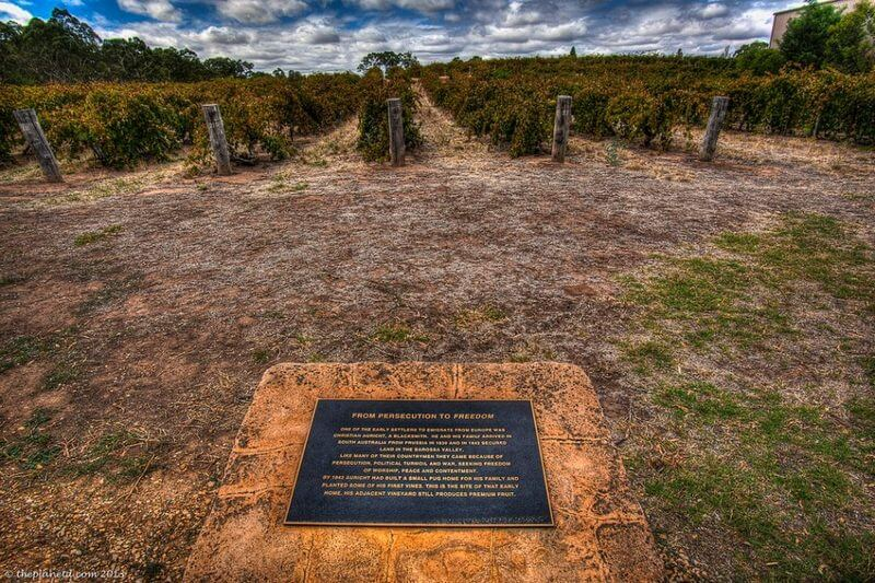 Barossa Valley, Australia - Possibly the Oldest Vines in the World
