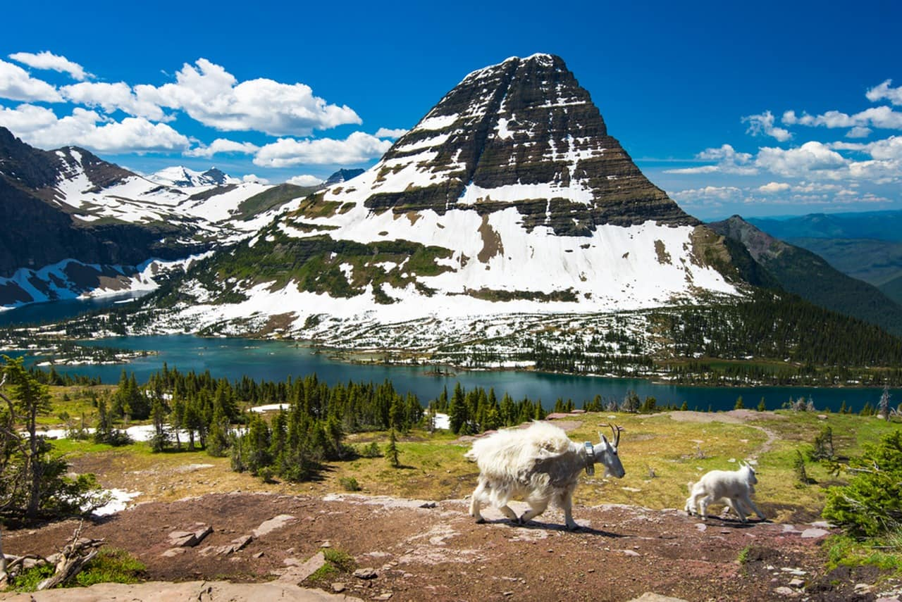 Glacier National Park Hikes header