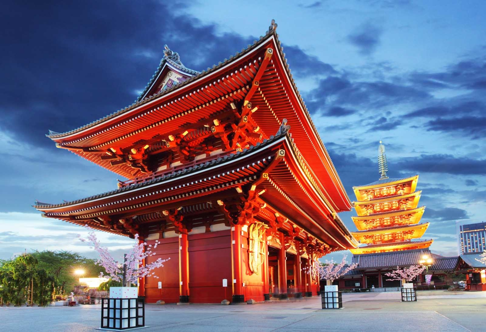 things to do in tokyo japan