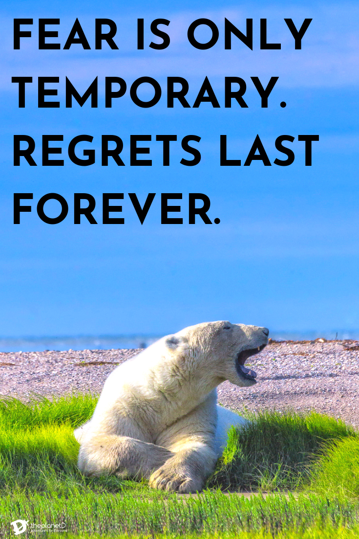 Best-Travel-Quotes-fear-is-temporary