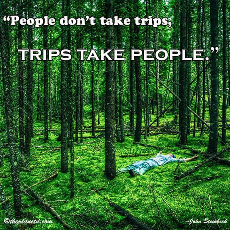 travel quotes and trips