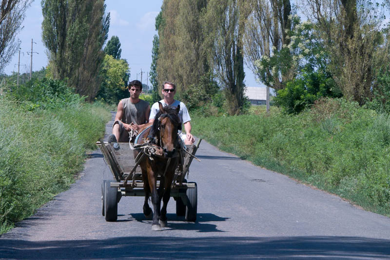 travelling easy in ukraine by horse cart