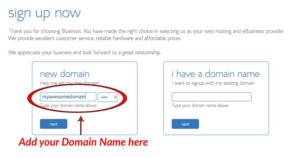 step 2 getting your domain name