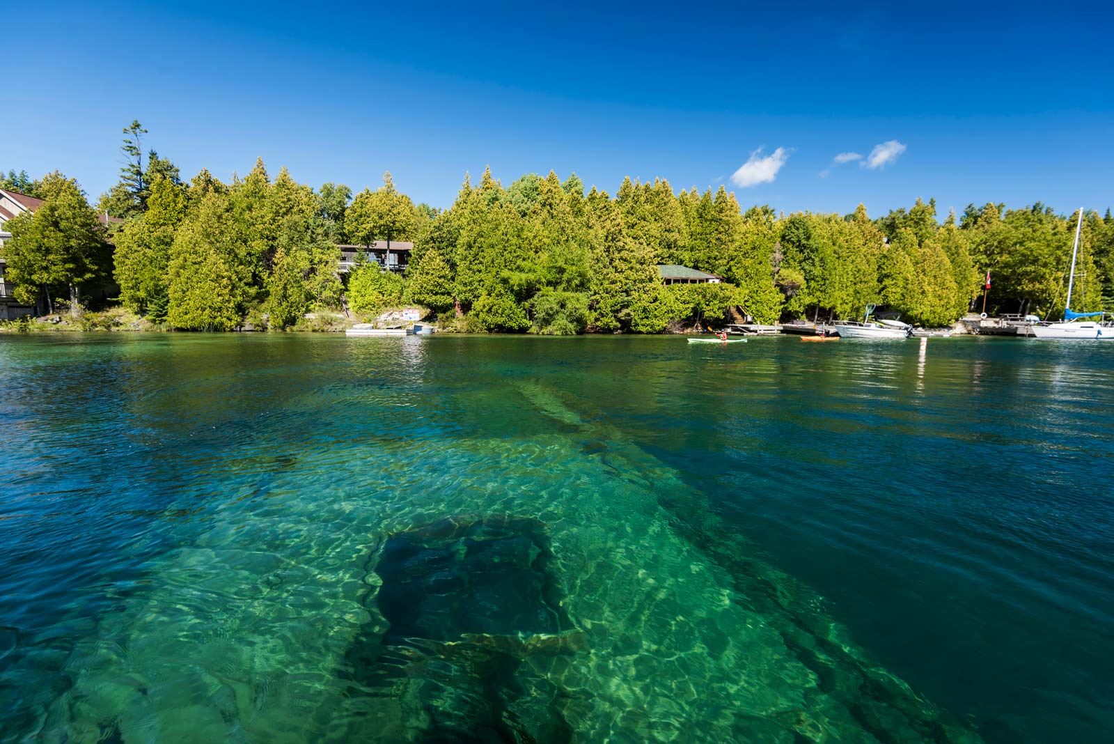 Boat Tours in Tobermory