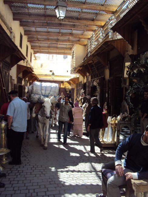 donkey in medina in morocco