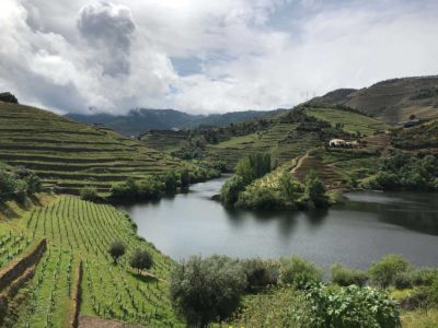 Guide to the Douro Valley from Porto – Portugal's Most Famous Wine Region