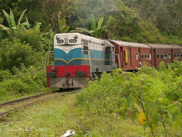 Train track, Ella