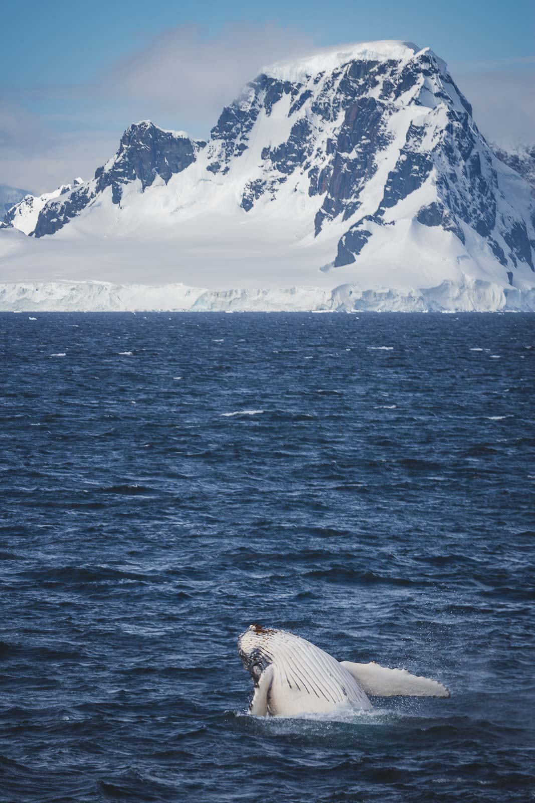Fact Antarctica Most Fresh Water