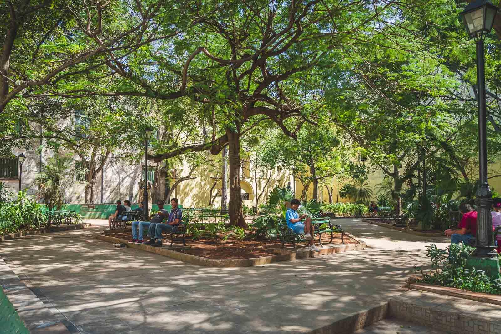 people on phones in park in Cuba wifi is scarce