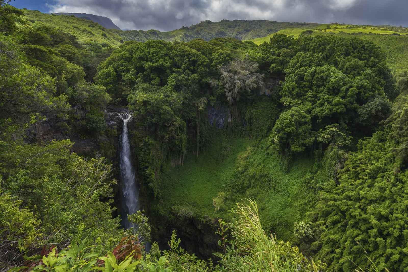 Fact: King Kamehameha united Hawaii