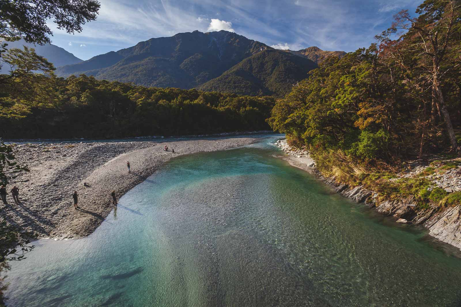 More Facts about New Zealand