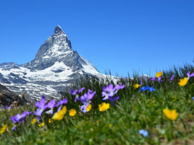 16 Incredible Facts About Switzerland