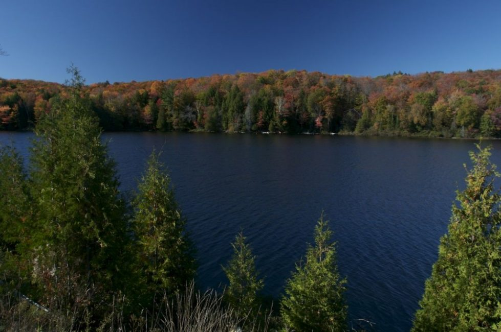 The Fall Colours on a Lake in Haliburton