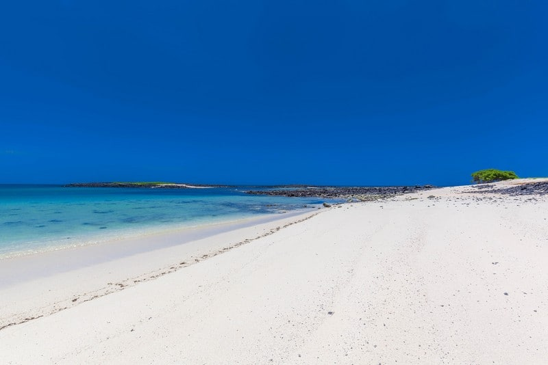 The Deserted White Sand beaches of the Galapagos Islands