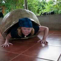 Galapagos_Tortoise_Dave_Deb-2