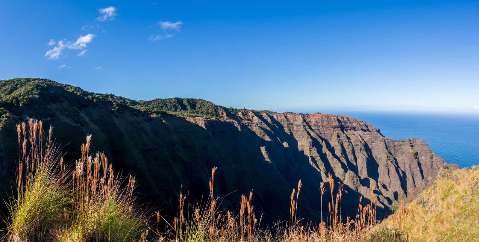 Awaawapuhi Trail Hawaii