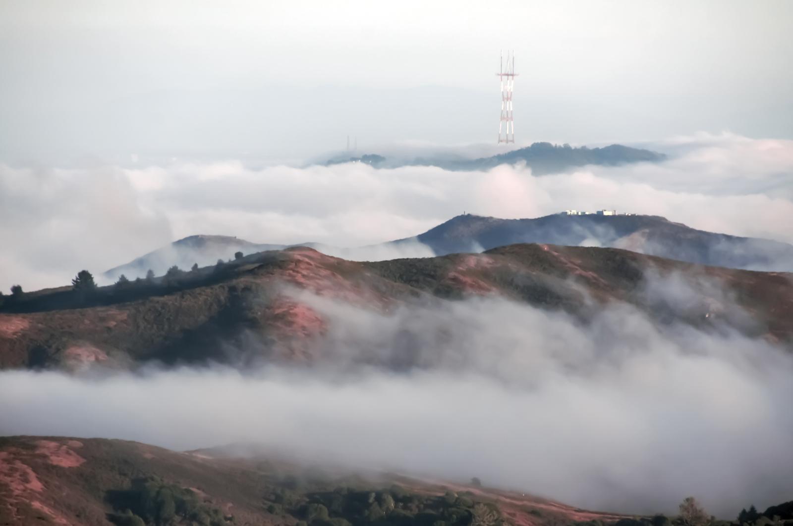 Mount Sutro Lop in San Francisco