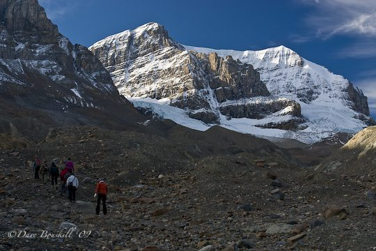 Climbing to the Athabasca Glacier
