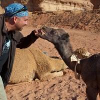 Jordan-Camel-Wadi-Rum