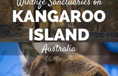 Kangaroo Island wildlife sanctuaries Australia