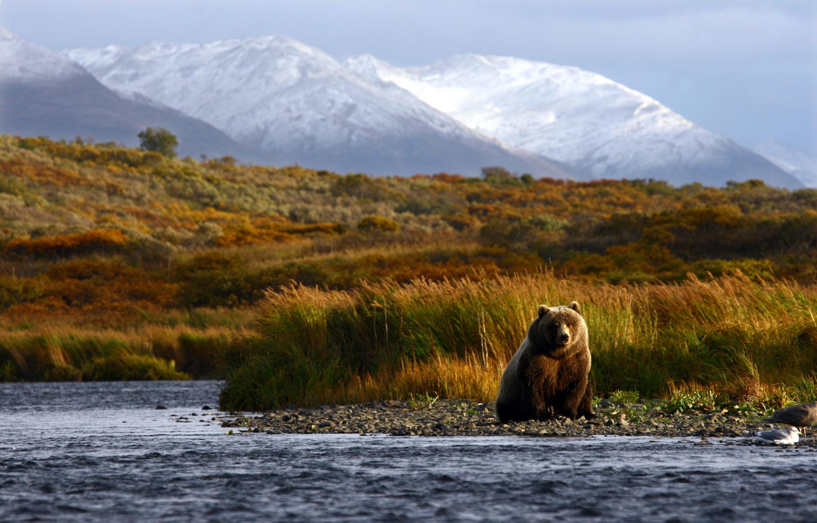 Kodiak National Wildlife Refuge in Alaska