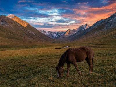 Kyrgyzstan Trekking by Horse – Into Jyrgalan and the Boz Uchuk Lakes