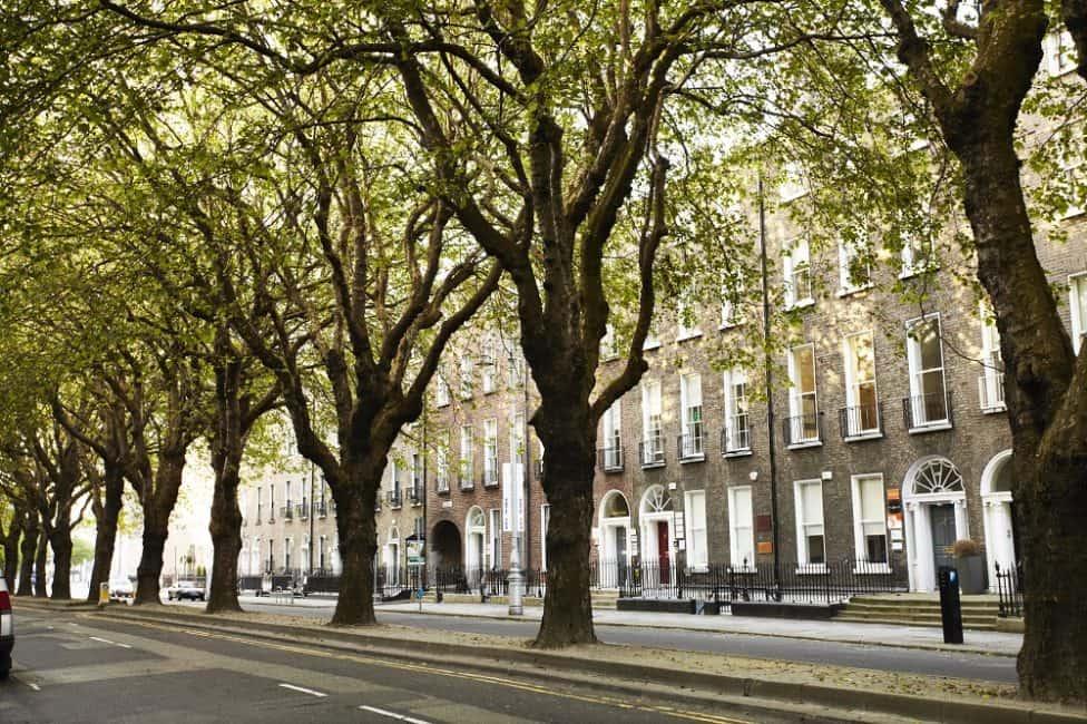 things to do in Dublin Ireland | treelined street