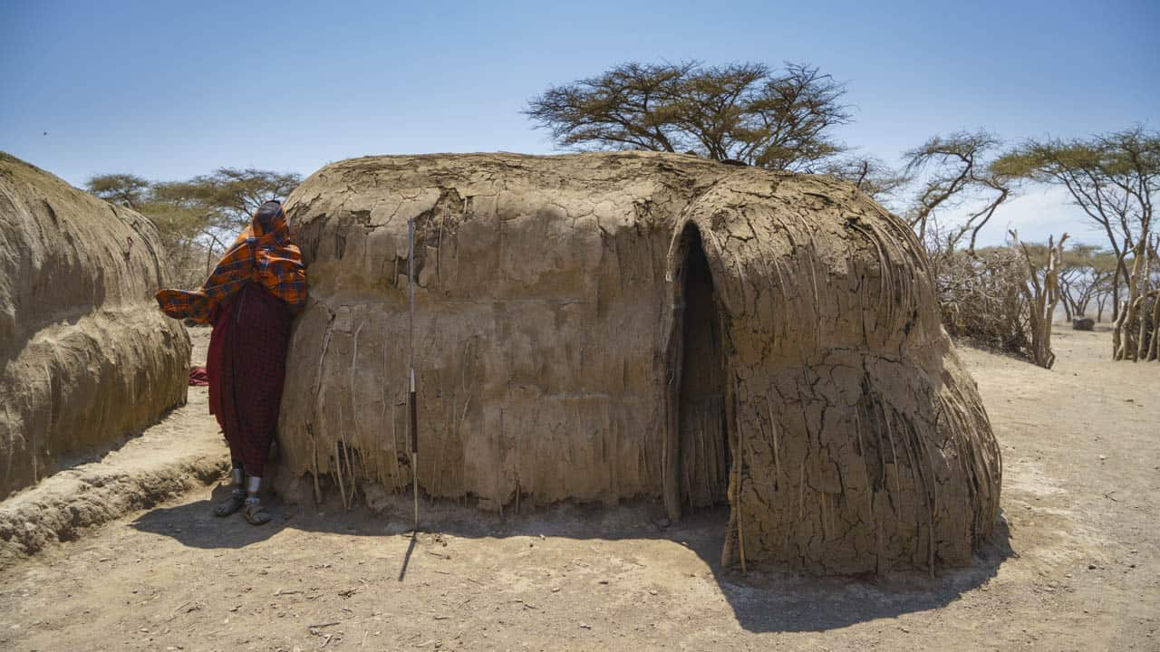 Maasai mud houses