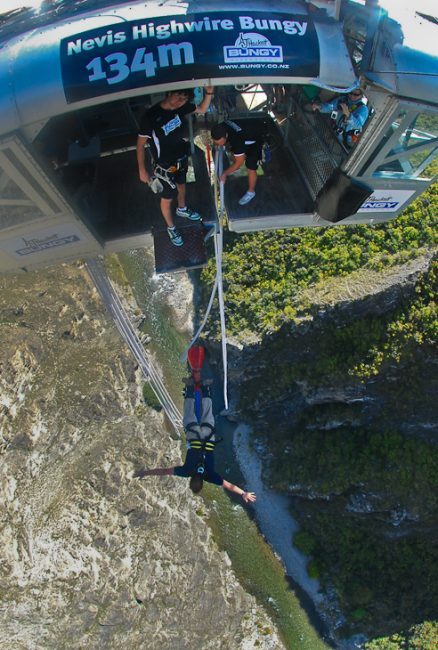 highest bunjy jump new zealand