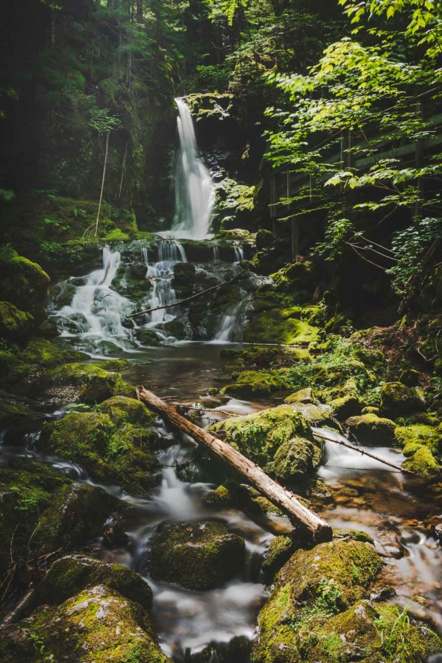 waterfall in fundy national park