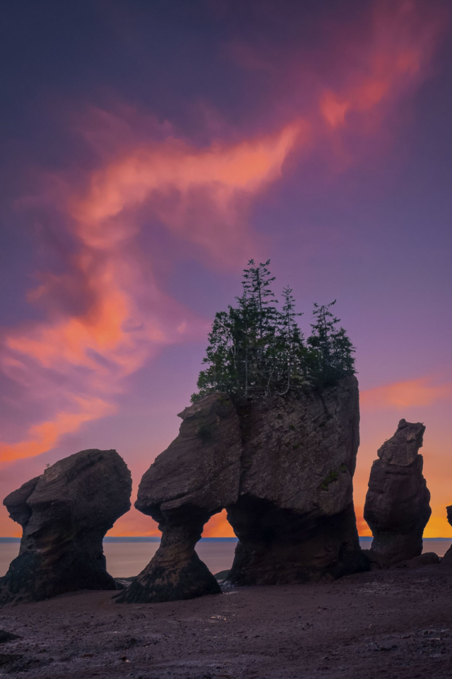best places to visit in new brunswick hopewell rocks